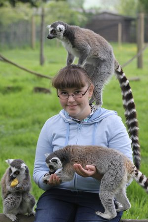 The Lake District Wildlife Park: Keeper Experience May 2014