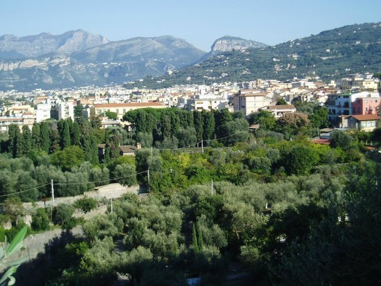 Minerva Hotel: 丘の上の方の景色