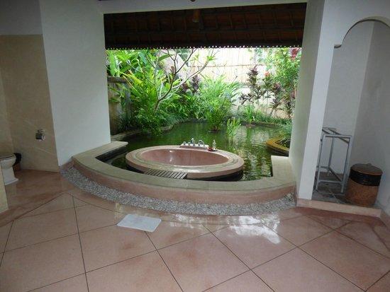 Villa Taman di Blayu: Salle de bain