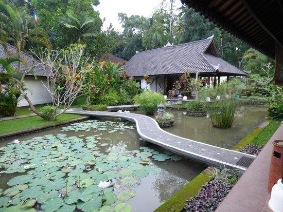 Villa Taman di Blayu: Jardin aquatique