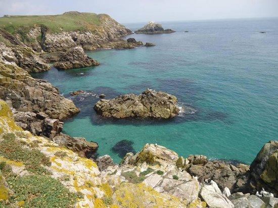 Saltee Islands: Lovely coast