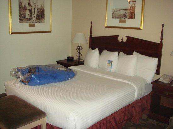 Days Inn & Suites Yellowknife : ベッド