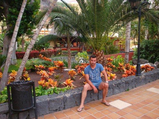 Bahia Principe San Felipe: jardim