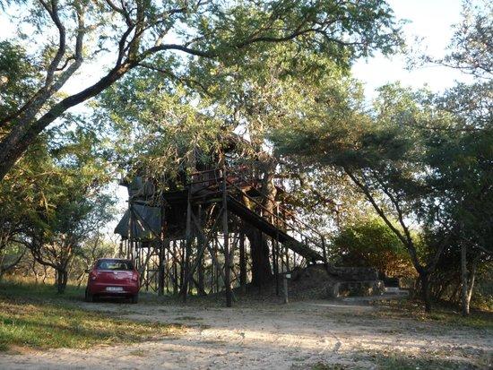 Pezulu Tree House Game Lodge: honey moon house
