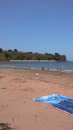Goodrington Sands: sandy beach