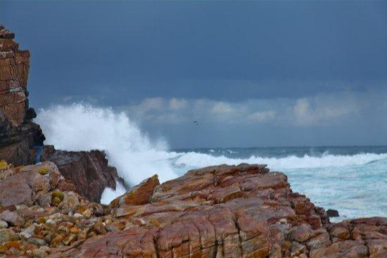 Cape of Good Hope: Splashing of the ocean waves
