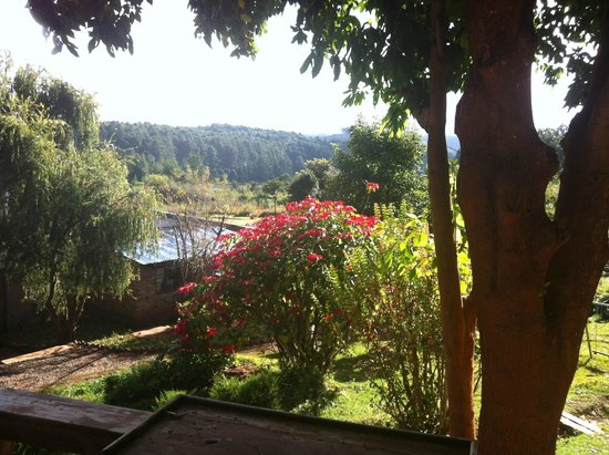 Luwawa Forest Lodge: The view from our bedroom balcony