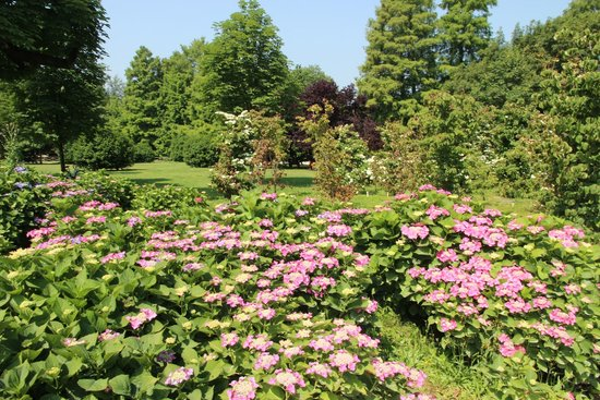 Parco Sempione : Парк Семпионе