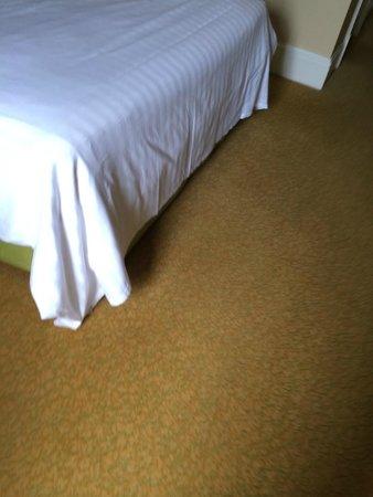 Bristol Marriott Royal Hotel : carpet not clean