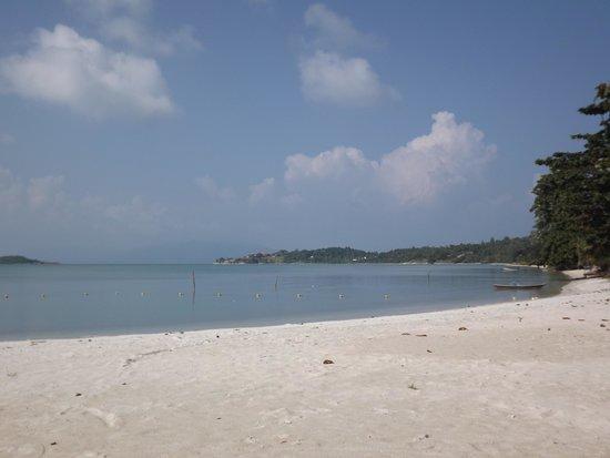 Samui Boat Lagoon : Stand