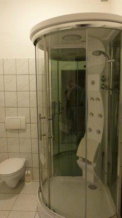 Alte Direktionsvilla Kupfermuehle: Appartment Duschtempel