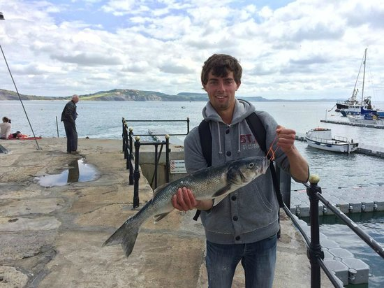 Harry May Boat Trips : On the end of the Cobb with the 6lb Bass