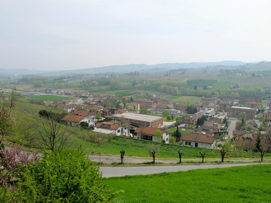 Piedmont Food and Wine - Day Tour: View of Barbaresco wine country