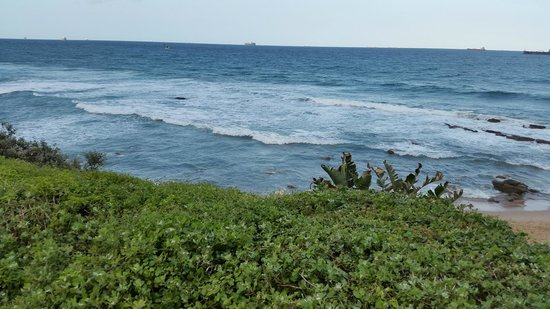 Beverly Hills: View of the Indian Ocean