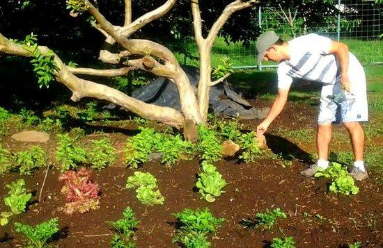 هوتل روبليدال: Emmanuel showing me the garden