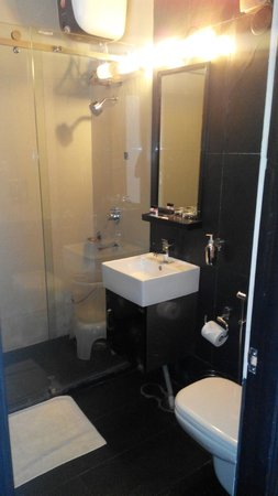 Kasauli Exotica: bath room