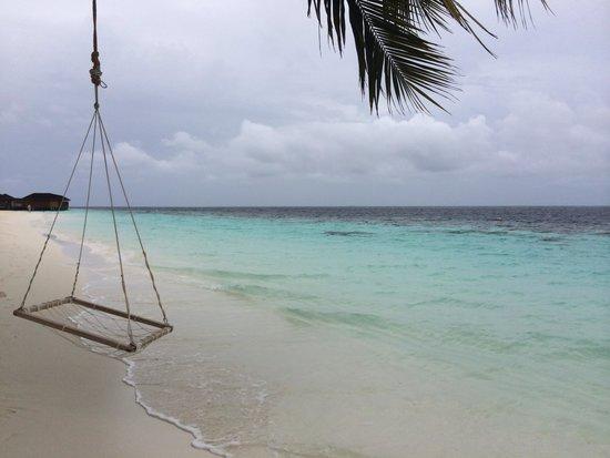 Vilamendhoo Island Resort & Spa : Swing away