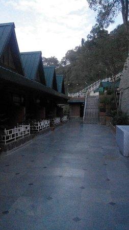 Kasauli Exotica: reception