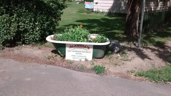 Alameda's Hot Springs Retreat: Flower bed