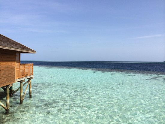 Vilamendhoo Island Resort & Spa : Our view from the room
