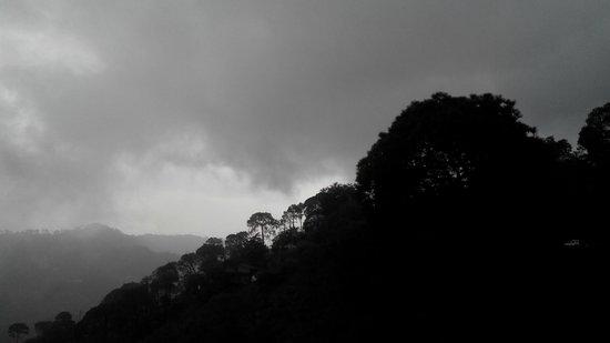 Kasauli Exotica: view