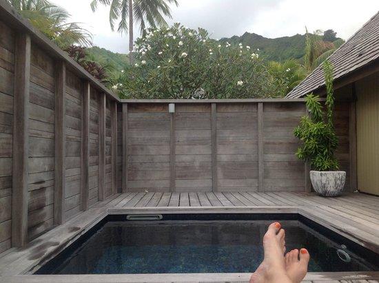 Hilton Moorea Lagoon Resort & Spa: Pool View