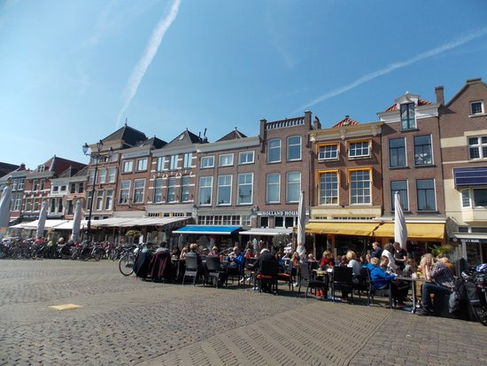 Delftse Hout: Delft