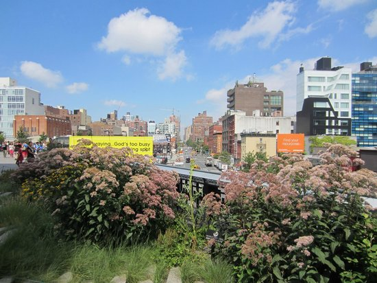 High Line: View from the Highline