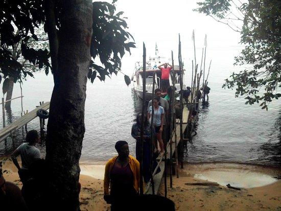Amazon Backpackers: Day tour Rio Negro