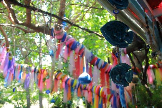 Cici Sirince Mutfagi: dekorlar hoş :)