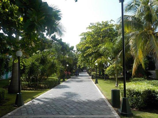 Hotel Riu Playacar : pathway