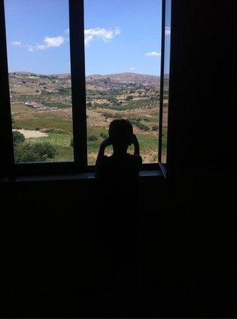 B&B Villa del Saraceno: La veduta dalla stanza