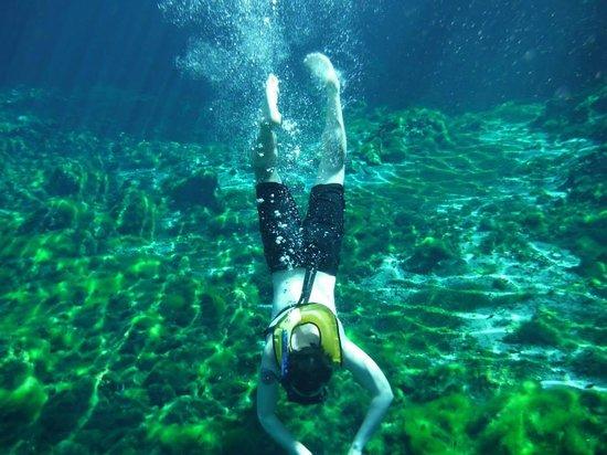Grand Sirenis Riviera Maya Resort & Spa: snorkelling in open cenote