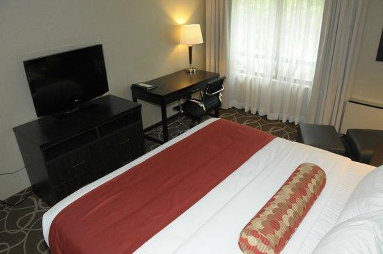 Comfort Inn: King Guestroom
