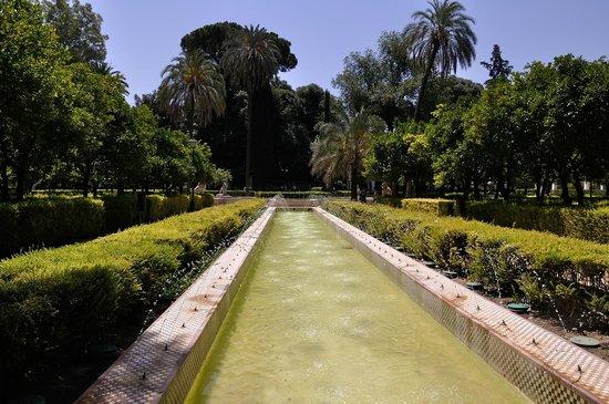 Parque de Maria Luisa: bassin et jets d'eau