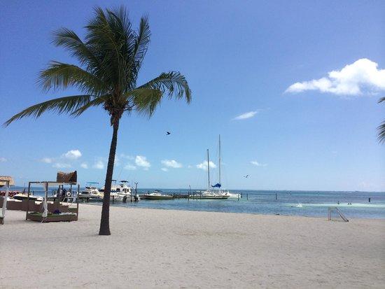 Ocean Spa Hotel: Beach