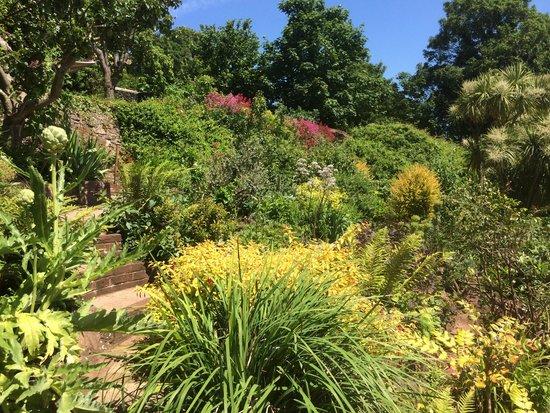 Marston Lodge Hotel: Our stunning gardens