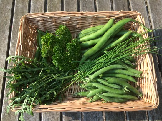 Marston Lodge Hotel: Fresh produce from our allotments