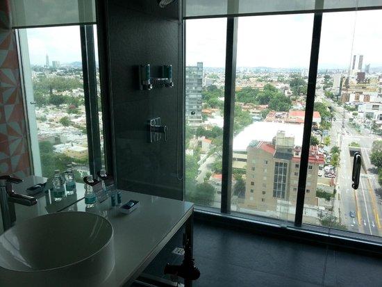 Aloft Guadalajara: View from Shower