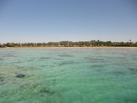 Steigenberger Al Dau Beach Hotel: Plage