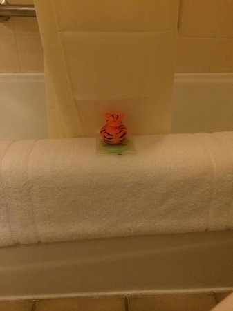 The Inn at Tomichi Village: bath toy