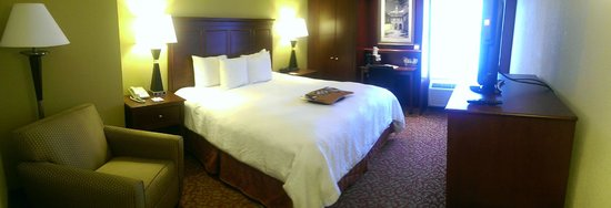 Hampton Inn & Suites Williamsburg-Richmond Rd.: King Bed