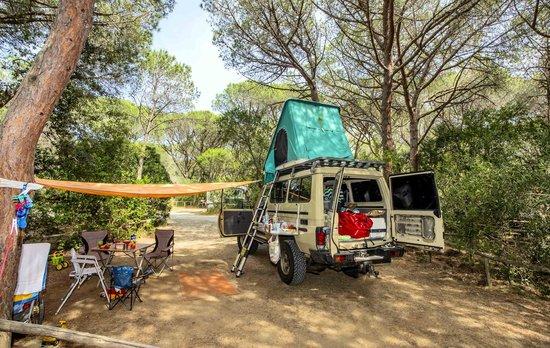 Camping Maremma Sans Souci: PIAZZOLA BUS