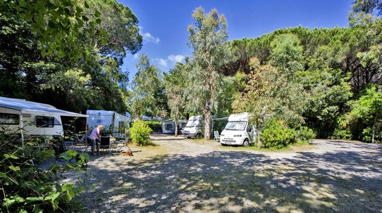 Camping Maremma Sans Souci: PIAZZOLA CAMPER