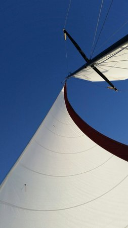 Charleston Sail - Harbor Yacht Tours: Nothing better than look up to beautiful bright blue sky, feel the breeze, listen to the wind pu