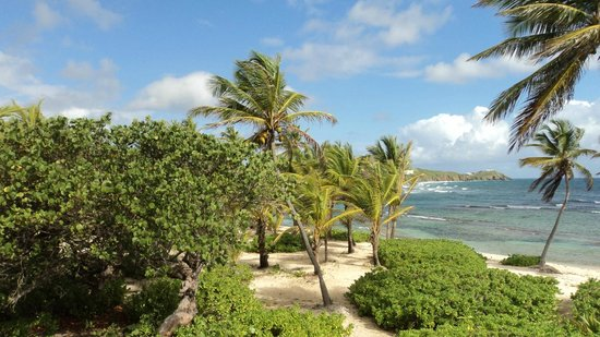 The Palms at Pelican Cove: Room with a ocean view