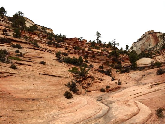 Zion Canyon Scenic Drive: Hiking up the slanted rocks
