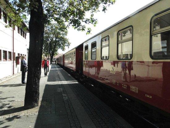 Harzer Schmalspurbahnen: Am Bahnhof in Wernigerode