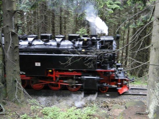 Harzer Schmalspurbahnen: Dampflock auf dem Weg nach Schierke