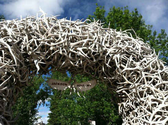 Town Square: Antler Arch